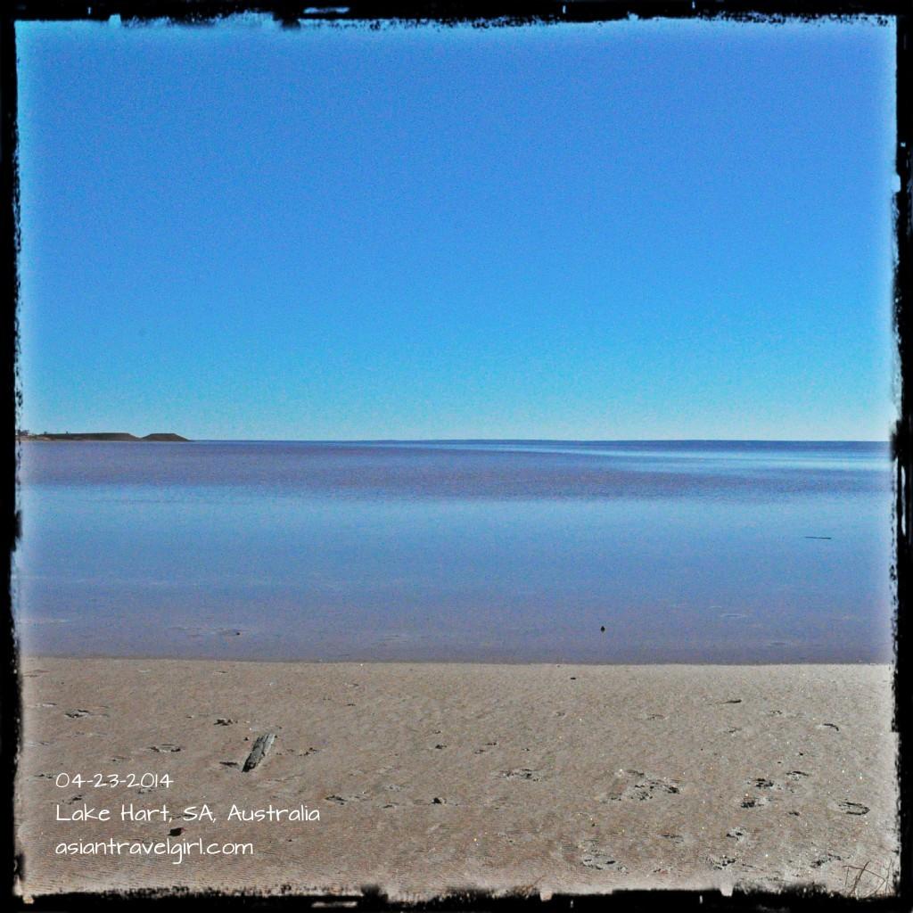 Lake Hart 澳洲 鹽湖 salt lake australia