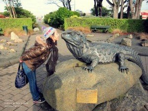 Southland Museum: Meeting of the 113 yr old Henry the Tuatara