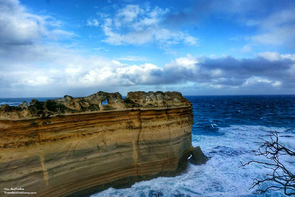 Razorback rainbow 大洋路