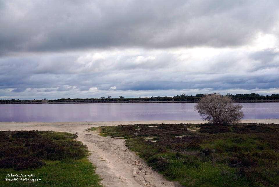 澳洲 粉紅湖 pink lake