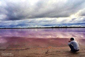 澳洲粉紅湖 pink lake