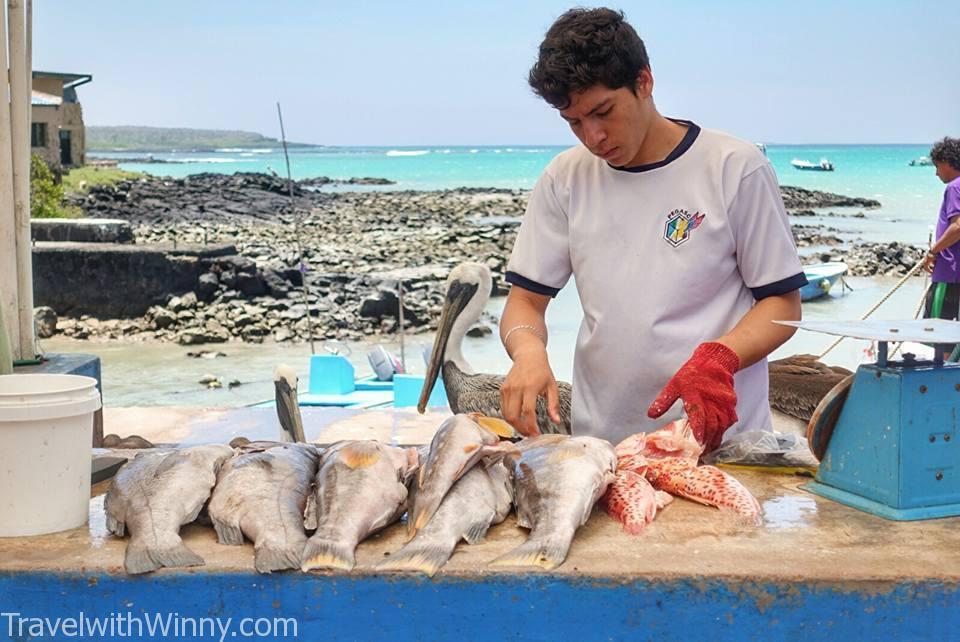 fish market 魚市場