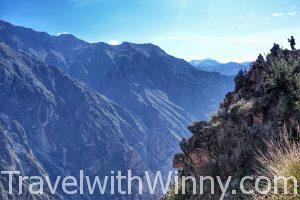 【秘魯】全世界第二深的Colca 大峽谷 & 安地斯神鷹近距離接觸