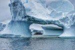 10 Day Antarctica Peninsula with M/V Ocean Nova- Part 2