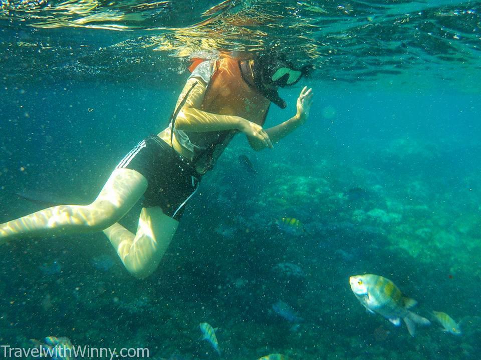 snorkling galapagos 加拉巴哥群島 浮淺