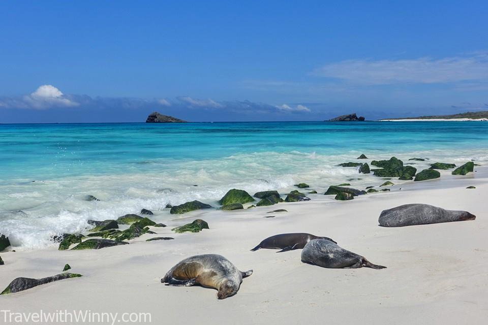 Galapagos Islands 加拉巴哥群島