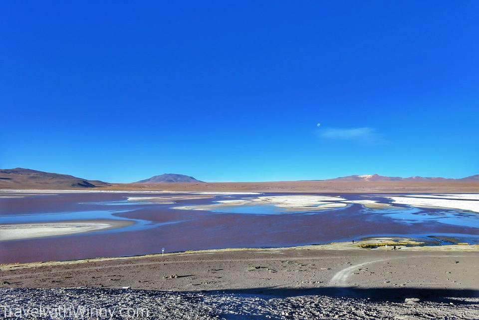 Laguna Colorada 粉紅湖