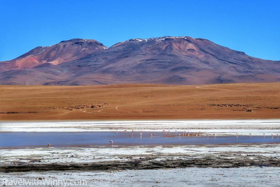 高山湖 Laguna Hedionda
