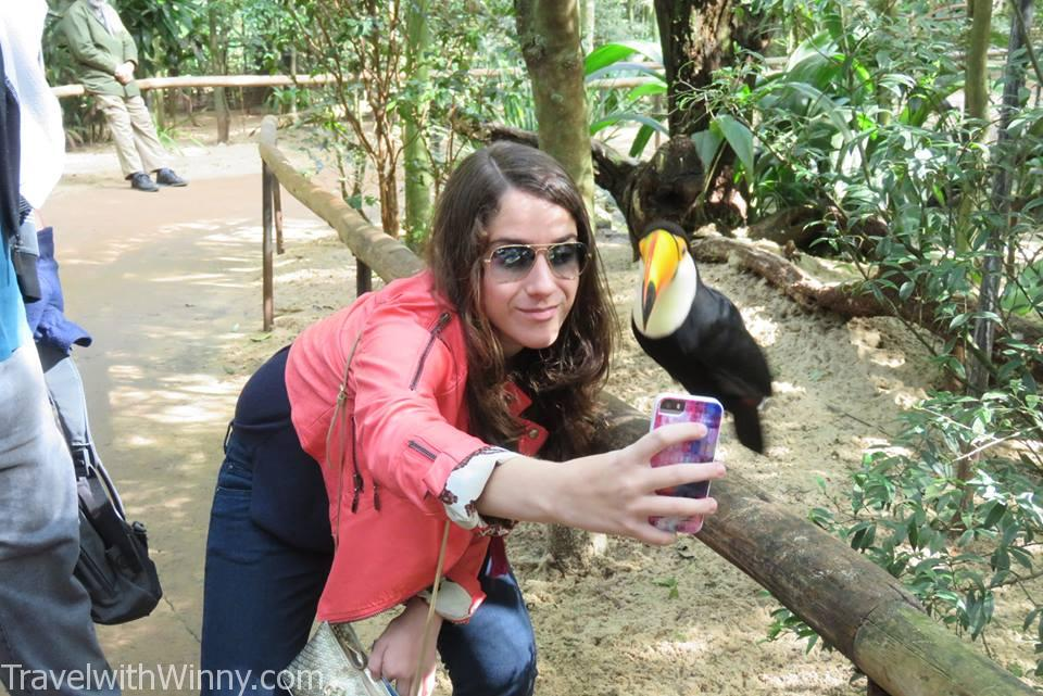 animal selfies 動物自拍