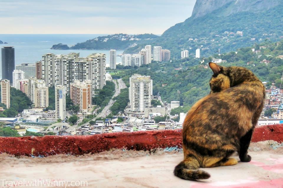 Contrast, Favela