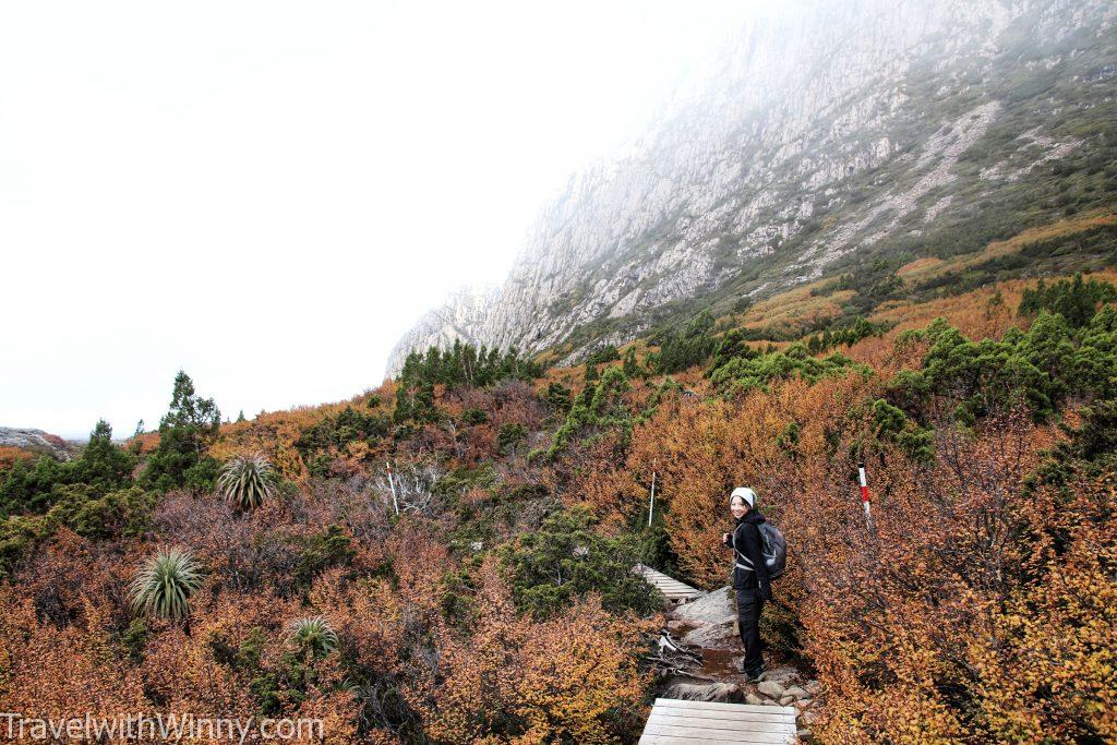cradle mountain summit 搖籃山