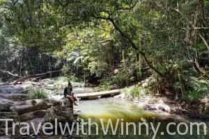 庫蘭達 kuranda jungle walk 雨林