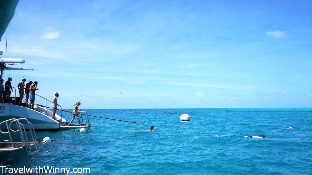 cairns snorkeling 凱恩斯 浮潛