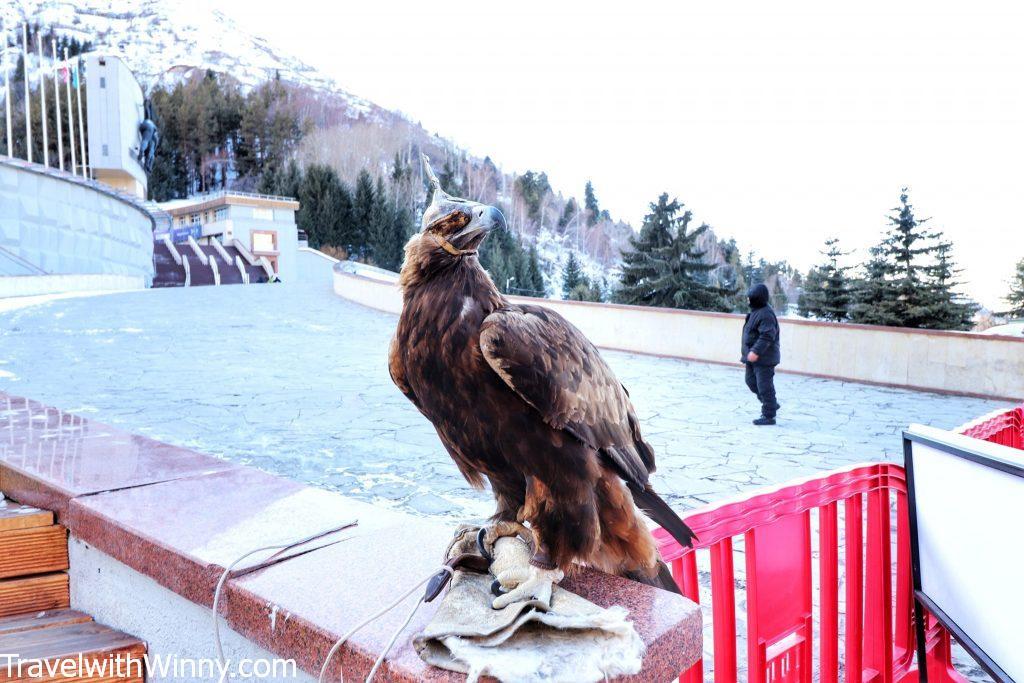 falcon central asia