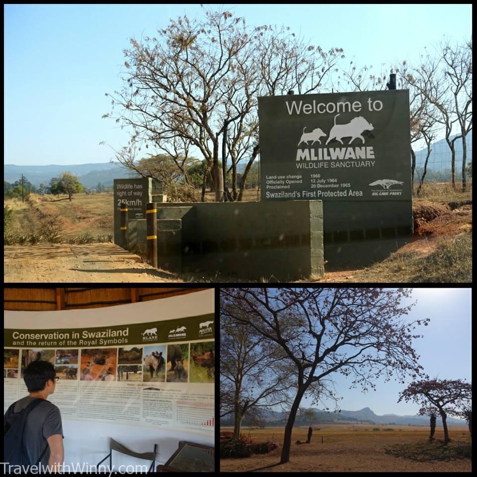 Mlilwane Nature Sanctuary 野生動物自然保護區