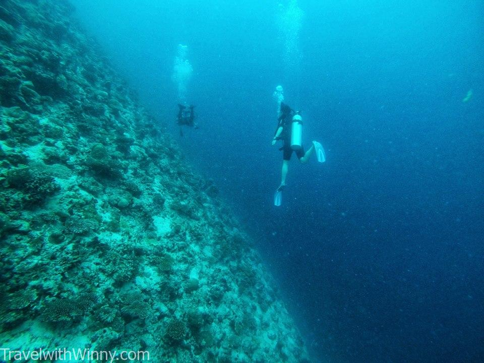 馬爾地夫潛水 south ari atoll