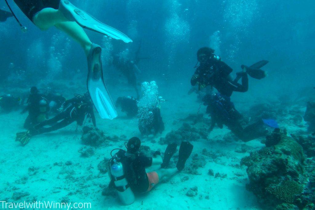馬爾地夫 潛水 diving maldives