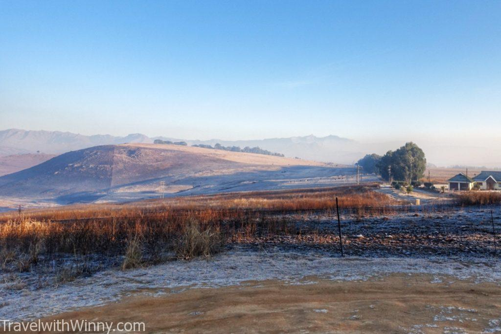 morning frost 清晨 早上 霜