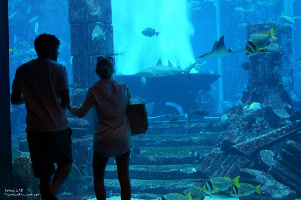 The Lost Chambers Aquarium Atlantis Dubai