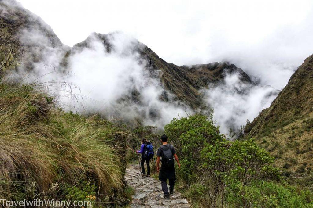 雲海 cloud forest