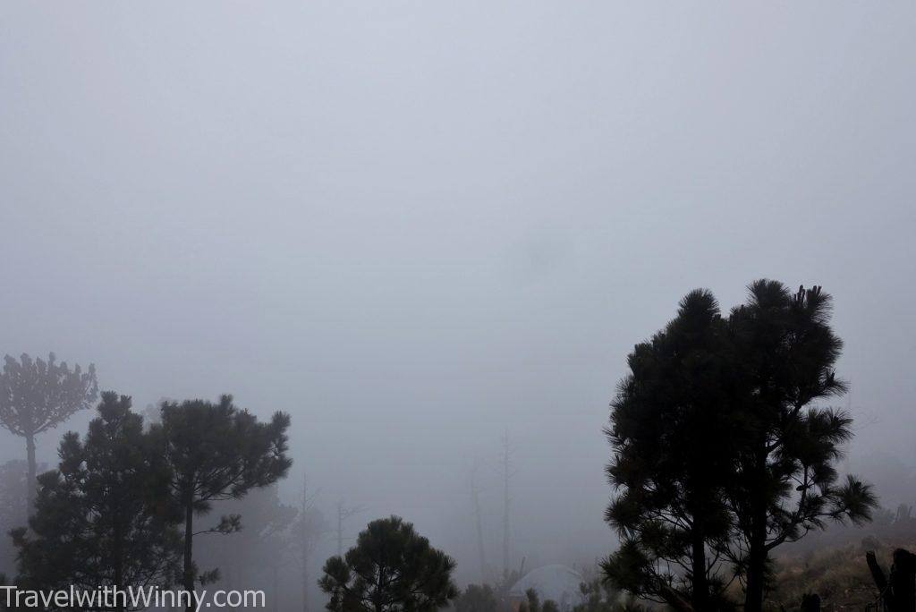 濃霧 dense fog