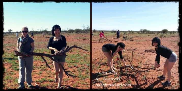 撿木頭 outback