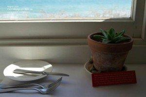 seaside window display