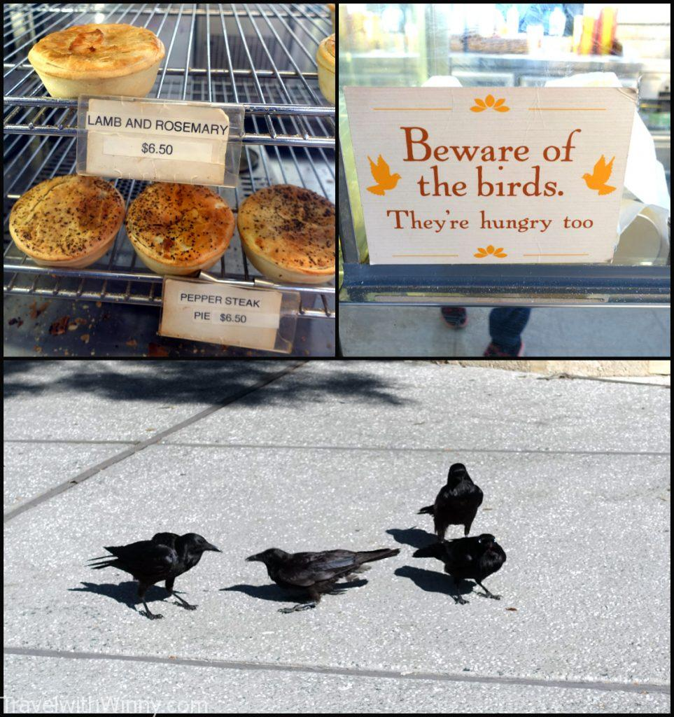 bakery australia black bird